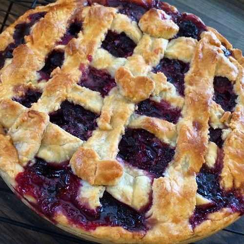 Won't win any appearance awards, but I made my first pie today. Blackberry! #100happydays (34/100)