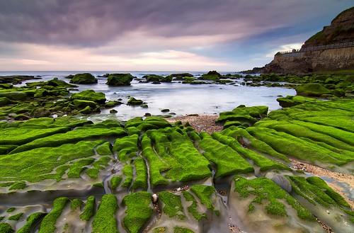 longexposure moss cove leefilters newcastlesouthbeach