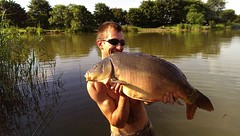 Large Carp