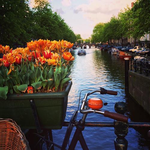 Amsterdam no verão