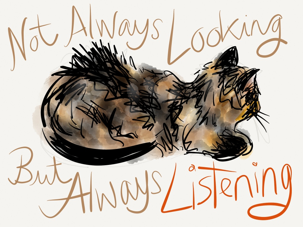 "Our cat Raisin drawn with the ""Paper"" app 3"