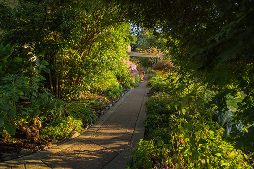 summer oregon garden redbrick gardenpath walnuthill