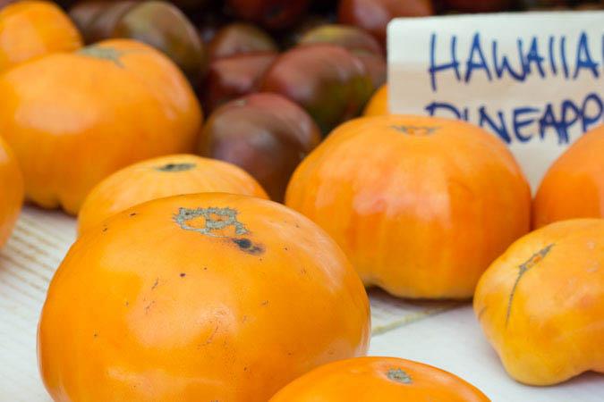 Tomatos 2.jpg