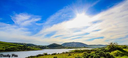 california landscape scenery reservoir nicasio