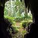 Caverna - Parque Lage - Buraco - Natureza - Verde - Rio de Janeiro - Brasil by Leonardo Martins