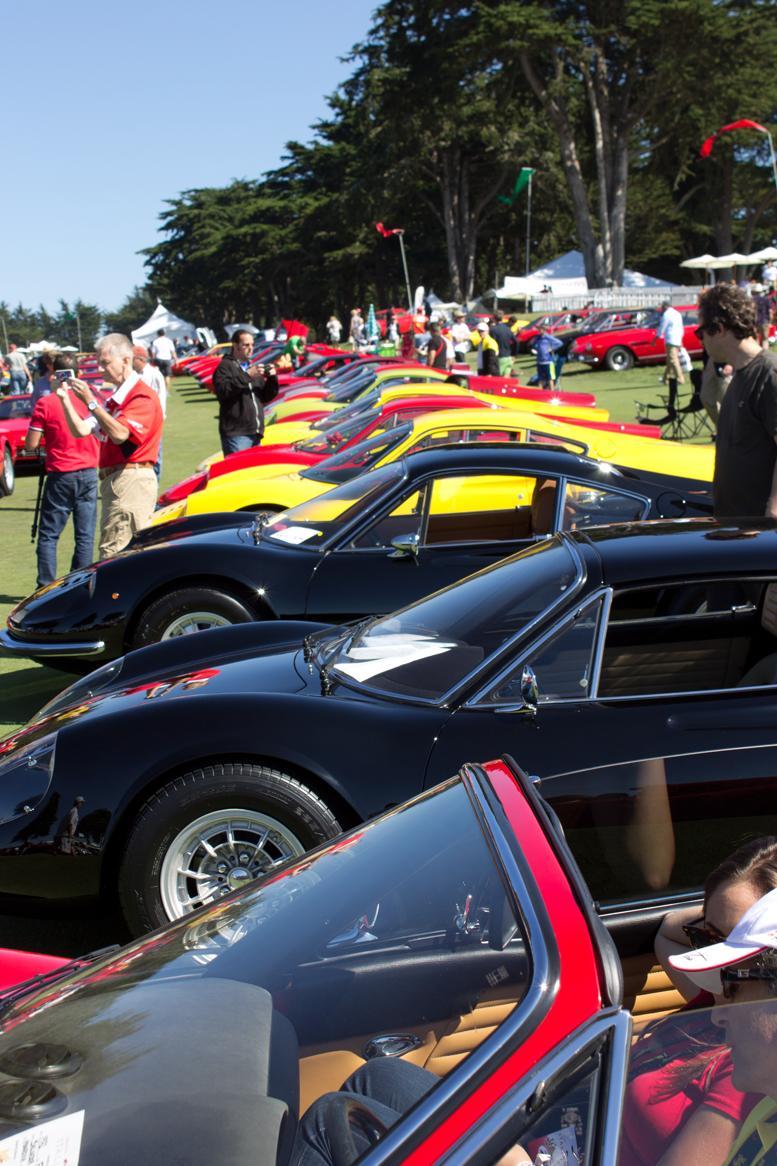 Italian Concours Ferraris (2)