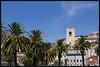 Portuguese Palms