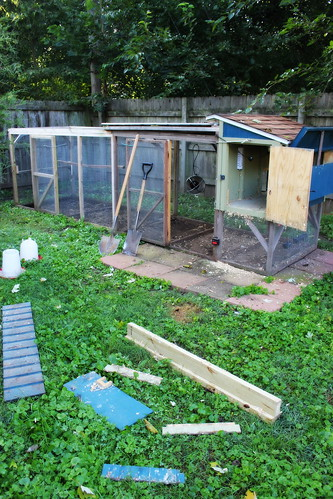 20140920. The biannual massive coop cleaning.