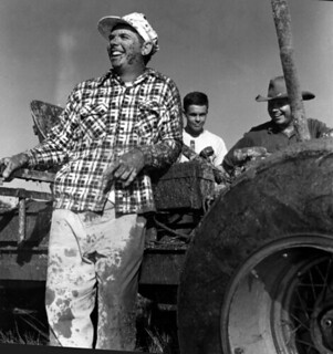 Harry Lowe at Naples' swamp buggy races