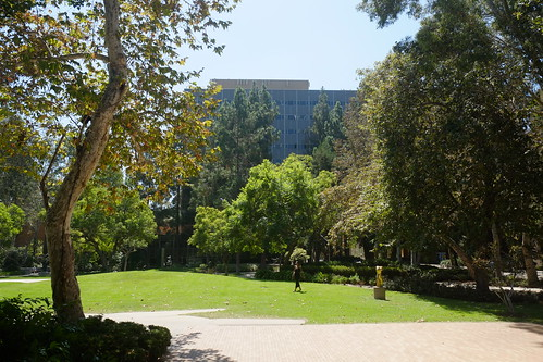 UCLA, where Bradbury wrote Fahrenheit 451