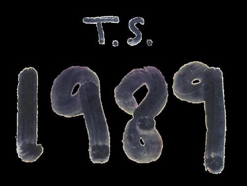 1989 album logo