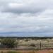 Davis Mountains - Marfa 2014 by plesko