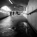83/365 - Tunnel puddle