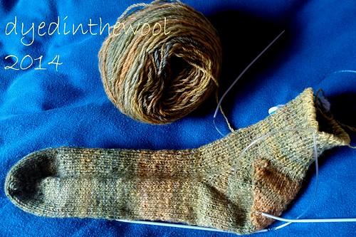harvestvines_socks_WIP2