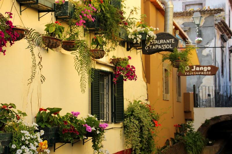 Madeira, Funchal 2014 + ostokset 157