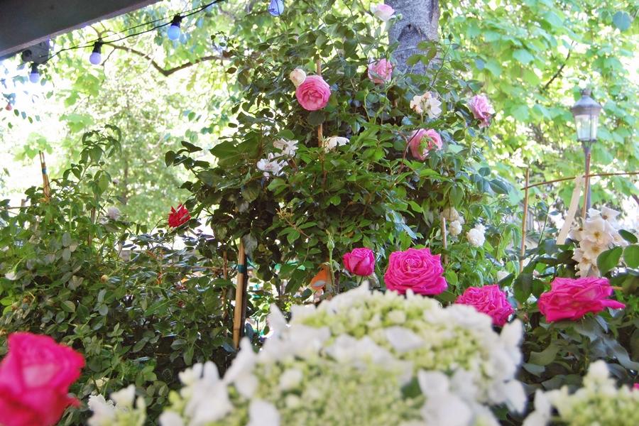 Marché aux fleurs (11)