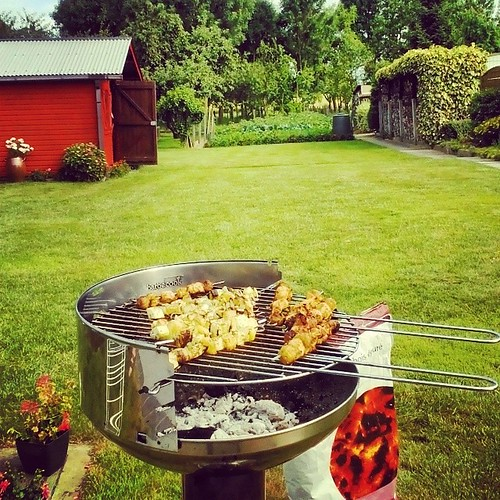 Home sweet home! Bbq master! Even better than Prague, a kaufland which is 24/7 open, our own vegetable garden! #mmmmmmmm