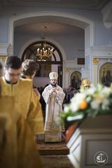 15 июня 2014, Литургия в Неделю Всех Святых / 15 June 2014, Divine Liturgy on Sunday of All Saints