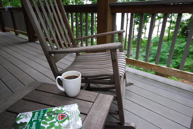 Enjoy your morning cup from the porch with waterviews from Cabin 11 at Occoneechee State Park