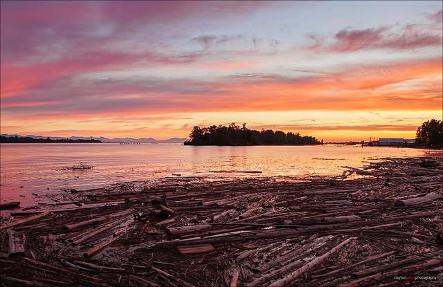 Shady Island Sunset