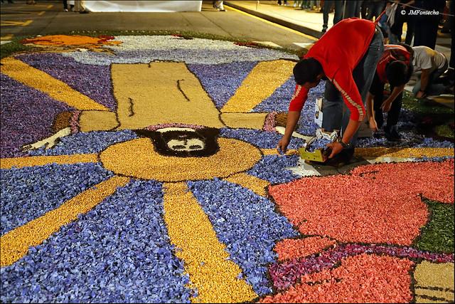 JMF251149 - Ponteareas - Galicia - Alfombras de flores del Corpus