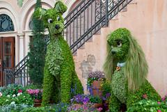 Disney Epcot Flower and Garden Festival