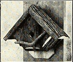 "Image from page 621 of ""St. Nicholas [serial]"" (1873)"