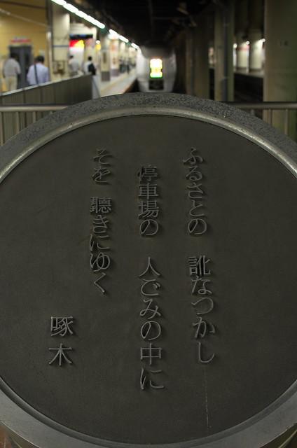Tokyo Train Story 特急スワローあかぎ 上野駅にて 2014年8月4日