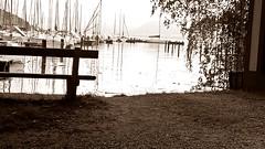 Kammer park
