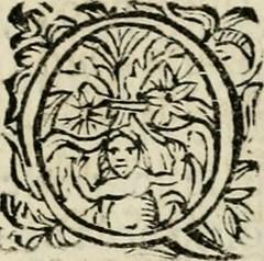 """Image from page 260 of """"Scelta d'alcuni miracoli e grazie della Santissima Nunziata di Firenze"""" (1636)"""