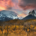 Patagonia's Feast of Gold by Ania.Photography - OFF