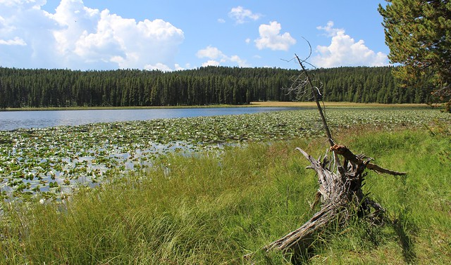 Wrangler Lake