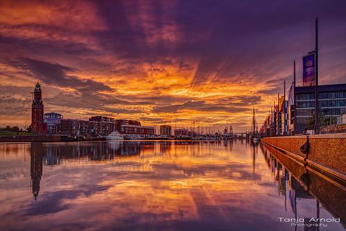 Purple Sunset #2