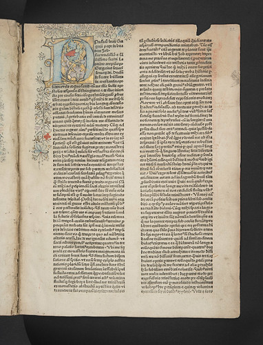 Washed out illuminated initial in Gregorius I, Pont. Max.: Moralia, sive Expositio in Job
