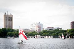 Sailboats on the Charles River - Boston
