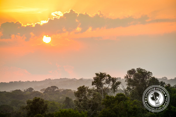 Sunrise in Amazon