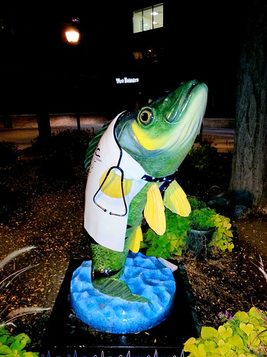 Fish Doctor at Beaumont Grosse Pointe
