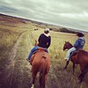 Just out riding ... #horses #ranchlife #weekend
