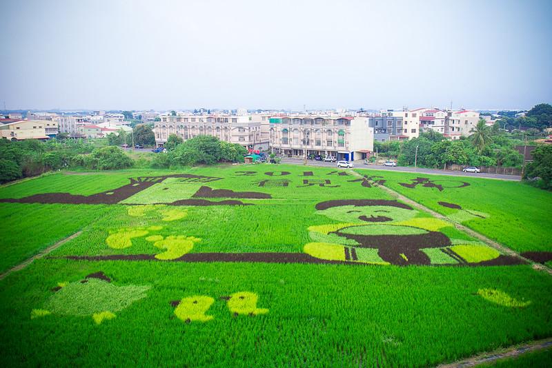 [景點] 台南 後壁 2014台南好米嘉年華 稻田變身大畫布,彩繪稻田好壯觀!
