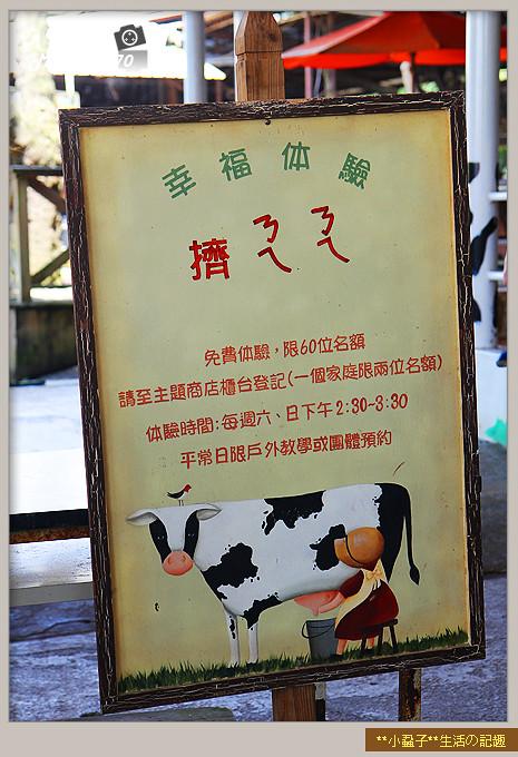台南小吃綠盈牧場43