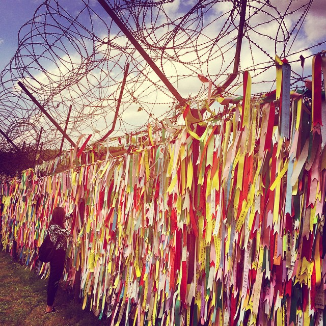 Ribbons and barbed wire