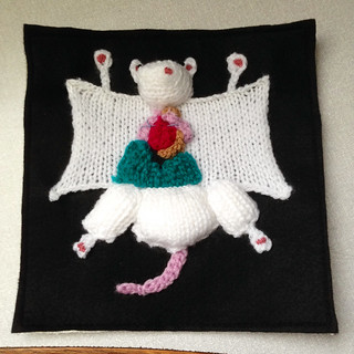 081-Fluffy dissected mouse