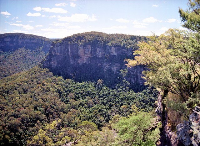 Cliffs of the Blue Mountains