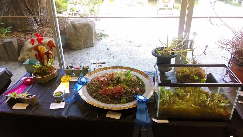 Dish Garden/Terrarium table