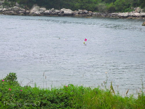 Fort Wetherill Dive