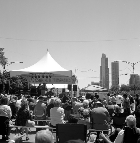 "Image titled ""Chicago Blues Festival, Chicago."""