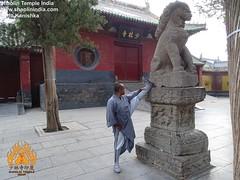 Mon, 07/07/2014 - 16:19 - Kung fu Stretching at the Shaolin I=Temple China Shaolin Kung Fu India