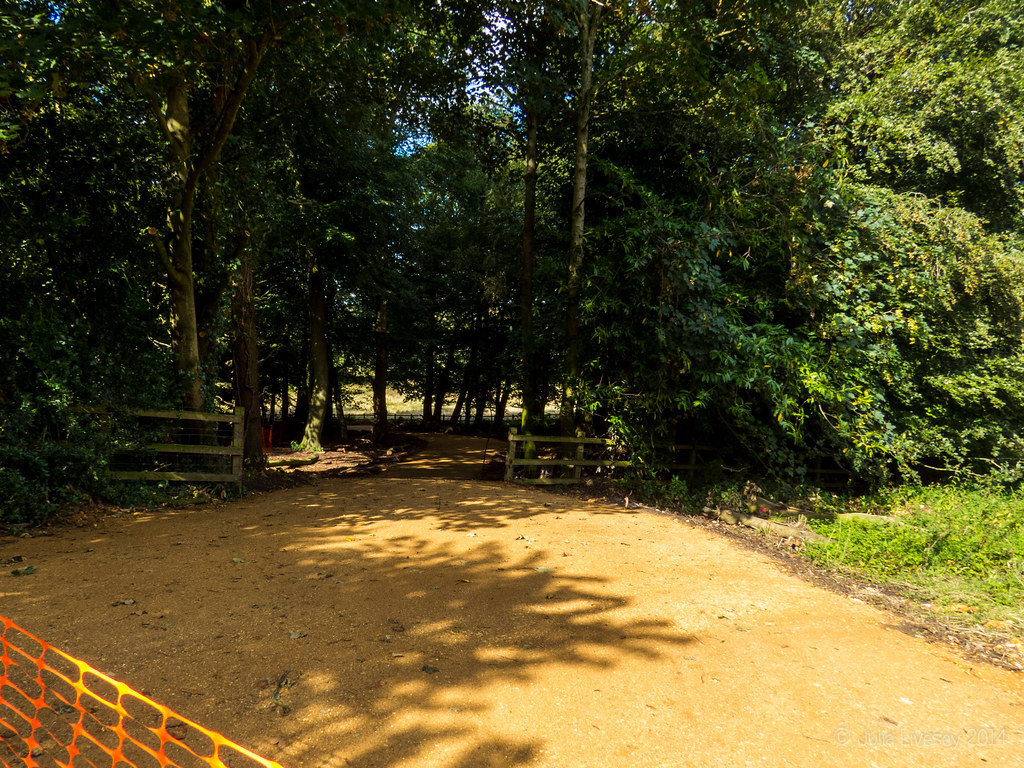 The new path is coming along