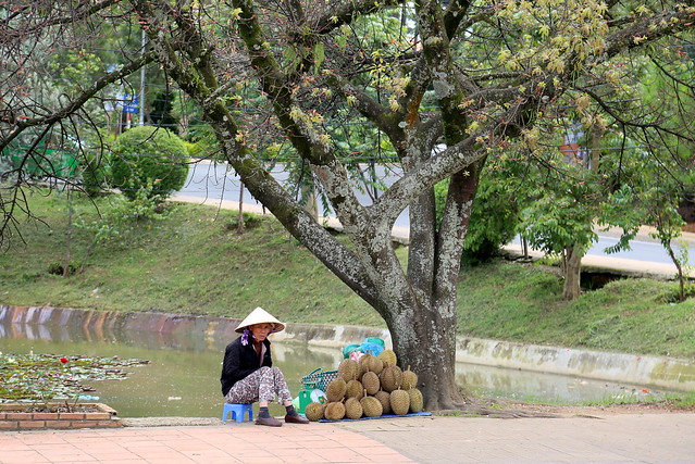 Durian seller in Da Lat