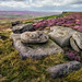 Purple and Gold, Stanage Edge by milo42